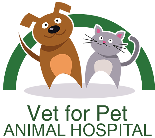 Vet For Pet Animal Hospital